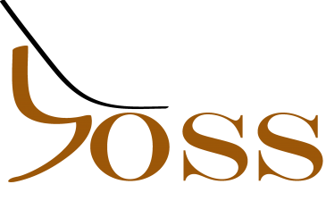 The BOSS Boccia Ramp Logo